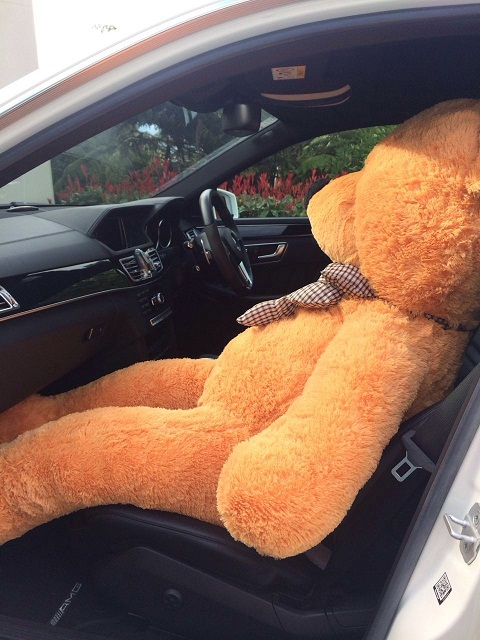 giant teddy 1.5m Light Brown